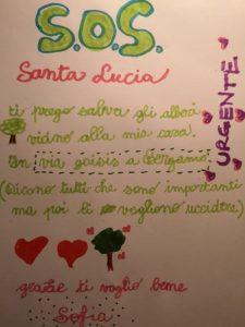 +++ ULTIM'ORA +++Alberi di via Goisis: ABBATTIMENTO SOSPESO